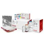 Collibri™ ES DNA Library Prep Kit for Illumina Systems, with CD indexes